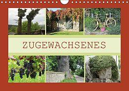 Cover: https://exlibris.azureedge.net/covers/9783/6658/6721/8/9783665867218xl.jpg