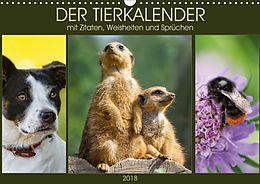 Cover: https://exlibris.azureedge.net/covers/9783/6658/7120/8/9783665871208xl.jpg