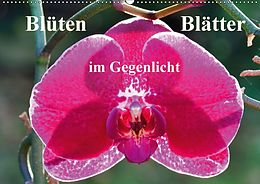 Cover: https://exlibris.azureedge.net/covers/9783/6658/9345/3/9783665893453xl.jpg