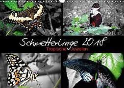 Cover: https://exlibris.azureedge.net/covers/9783/6659/1215/4/9783665912154xl.jpg