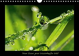 Cover: https://exlibris.azureedge.net/covers/9783/6659/3407/1/9783665934071xl.jpg