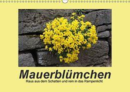 Cover: https://exlibris.azureedge.net/covers/9783/6659/4997/6/9783665949976xl.jpg