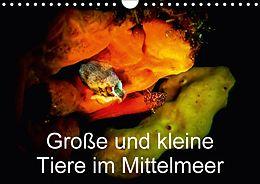 Cover: https://exlibris.azureedge.net/covers/9783/6659/5037/8/9783665950378xl.jpg