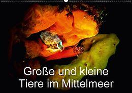 Cover: https://exlibris.azureedge.net/covers/9783/6659/5039/2/9783665950392xl.jpg