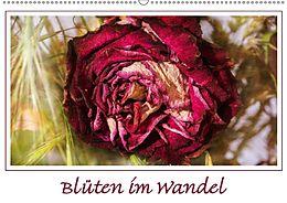 Cover: https://exlibris.azureedge.net/covers/9783/6659/5068/2/9783665950682xl.jpg