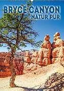Cover: https://exlibris.azureedge.net/covers/9783/6659/5299/0/9783665952990xl.jpg