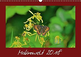 Cover: https://exlibris.azureedge.net/covers/9783/6659/5574/8/9783665955748xl.jpg