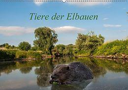 Cover: https://exlibris.azureedge.net/covers/9783/6690/2789/2/9783669027892xl.jpg
