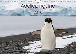 Cover: https://exlibris.azureedge.net/covers/9783/6690/3763/1/9783669037631xl.jpg