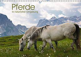 Cover: https://exlibris.azureedge.net/covers/9783/6691/0064/9/9783669100649xl.jpg