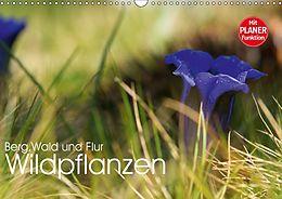 Cover: https://exlibris.azureedge.net/covers/9783/6691/1785/2/9783669117852xl.jpg