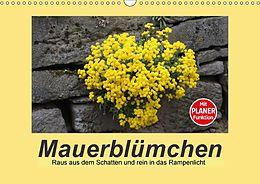 Cover: https://exlibris.azureedge.net/covers/9783/6691/2165/1/9783669121651xl.jpg