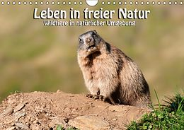 Cover: https://exlibris.azureedge.net/covers/9783/6691/9201/9/9783669192019xl.jpg