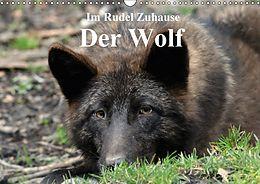 Cover: https://exlibris.azureedge.net/covers/9783/6691/9836/3/9783669198363xl.jpg