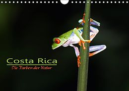 Cover: https://exlibris.azureedge.net/covers/9783/6692/1011/9/9783669210119xl.jpg