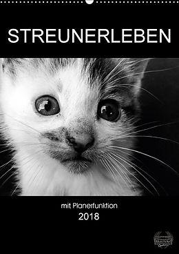 Cover: https://exlibris.azureedge.net/covers/9783/6692/6563/8/9783669265638xl.jpg