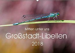Cover: https://exlibris.azureedge.net/covers/9783/6692/9372/3/9783669293723xl.jpg