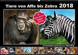 Cover: https://exlibris.azureedge.net/covers/9783/6692/9700/4/9783669297004xl.jpg