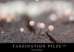 Cover: https://exlibris.azureedge.net/covers/9783/6693/1206/6/9783669312066xl.jpg