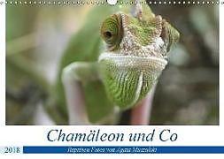 Cover: https://exlibris.azureedge.net/covers/9783/6694/0150/0/9783669401500xl.jpg