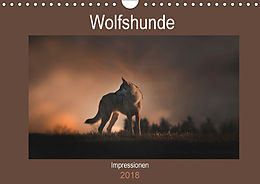 Cover: https://exlibris.azureedge.net/covers/9783/6694/0676/5/9783669406765xl.jpg