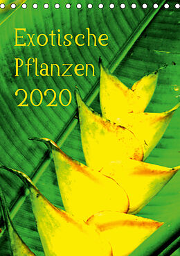 Cover: https://exlibris.azureedge.net/covers/9783/6703/7964/5/9783670379645xl.jpg