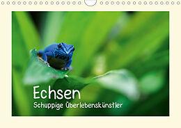 Cover: https://exlibris.azureedge.net/covers/9783/6704/0366/1/9783670403661xl.jpg