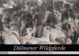 Cover: https://exlibris.azureedge.net/covers/9783/6704/0748/5/9783670407485xl.jpg