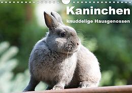Cover: https://exlibris.azureedge.net/covers/9783/6705/1591/3/9783670515913xl.jpg