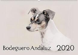 Cover: https://exlibris.azureedge.net/covers/9783/6705/3817/2/9783670538172xl.jpg