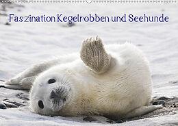 Cover: https://exlibris.azureedge.net/covers/9783/6706/4629/7/9783670646297xl.jpg