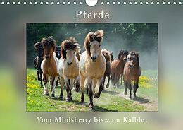 Cover: https://exlibris.azureedge.net/covers/9783/6707/1274/9/9783670712749xl.jpg