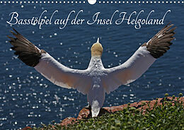 Cover: https://exlibris.azureedge.net/covers/9783/6707/1748/5/9783670717485xl.jpg