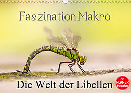 Cover: https://exlibris.azureedge.net/covers/9783/6707/6298/0/9783670762980xl.jpg