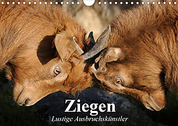 Cover: https://exlibris.azureedge.net/covers/9783/6707/7665/9/9783670776659xl.jpg