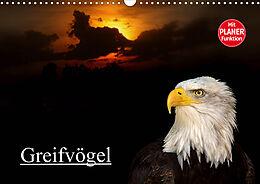 Cover: https://exlibris.azureedge.net/covers/9783/6707/7877/6/9783670778776xl.jpg