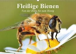 Cover: https://exlibris.azureedge.net/covers/9783/6707/8519/4/9783670785194xl.jpg