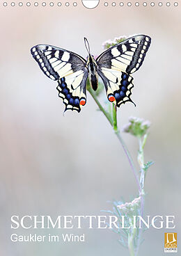 Cover: https://exlibris.azureedge.net/covers/9783/6707/9366/3/9783670793663xl.jpg