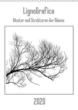 Cover: https://exlibris.azureedge.net/covers/9783/6708/7941/1/9783670879411xl.jpg