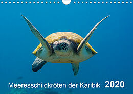 Cover: https://exlibris.azureedge.net/covers/9783/6709/0537/0/9783670905370xl.jpg