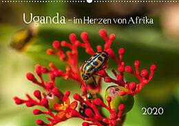 Cover: https://exlibris.azureedge.net/covers/9783/6709/8777/2/9783670987772xl.jpg