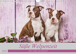 Cover: https://exlibris.azureedge.net/covers/9783/6709/9152/6/9783670991526xl.jpg