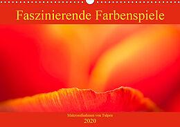 Cover: https://exlibris.azureedge.net/covers/9783/6710/3720/9/9783671037209xl.jpg