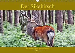 Cover: https://exlibris.azureedge.net/covers/9783/6711/0234/1/9783671102341xl.jpg