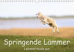 Cover: https://exlibris.azureedge.net/covers/9783/6711/9798/9/9783671197989xl.jpg