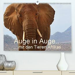 Cover: https://exlibris.azureedge.net/covers/9783/6712/7158/0/9783671271580xl.jpg