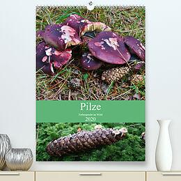 Cover: https://exlibris.azureedge.net/covers/9783/6713/5054/4/9783671350544xl.jpg