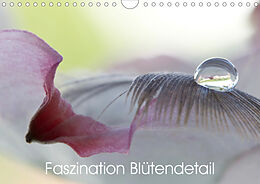 Cover: https://exlibris.azureedge.net/covers/9783/6713/8544/7/9783671385447xl.jpg