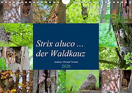 Cover: https://exlibris.azureedge.net/covers/9783/6714/0256/4/9783671402564xl.jpg