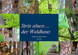 Cover: https://exlibris.azureedge.net/covers/9783/6714/0258/8/9783671402588xl.jpg